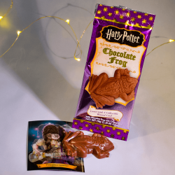 Harry Potter Chocolate Frogs - Mr Sweet