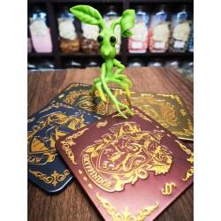 Sous-verres Harry Potter Hogwarts - Mr Sweet